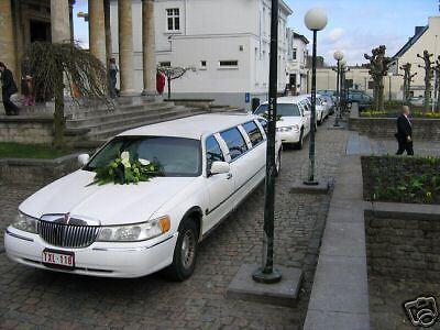 P.D.G. Limousine 5