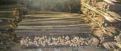 3 Chestnut Shanks Stickmaking Walking Stick Shafts Blanks Bark Seasoned Blank 4