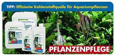 (9,00€/l) AQUALITY CO2 Kohlenstoffdünger 2.500 ml Pflanzendünger für Aquarium 2