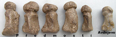 Serie of 6 paleolithic Venuses  - casts of resin 4