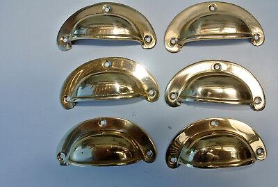 6 shell handles PULL polished Brass PULL knob kitchen cast 8 cm inc screws B 6