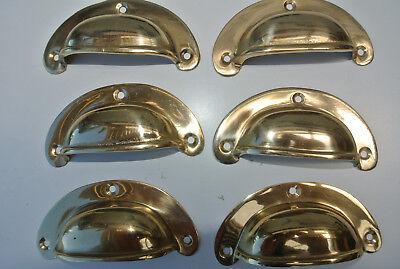6 shell handles PULL polished Brass PULL knob kitchen cast 8 cm inc screws B 11