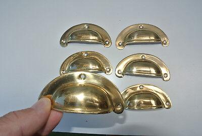 6 shell handles PULL polished Brass PULL knob kitchen cast 8 cm inc screws B 4