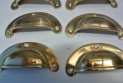 6 shell handles PULL polished Brass PULL knob kitchen cast 8 cm inc screws B 9