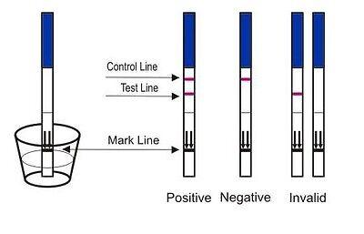 20x Pregnancy Test Strips Early Detection 10mIU HCG Urine Testing Kits 2