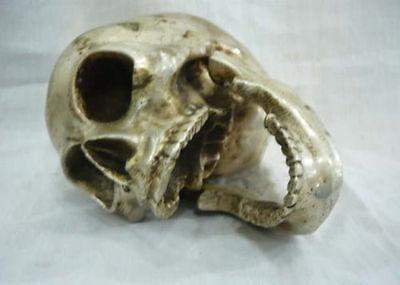 Wonderful tibet silver big skull In-D death's head netsuke sculpture 3