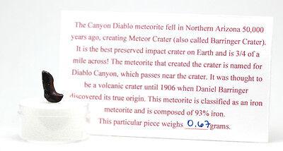 CANYON DIABLO IRON Meteorite Meteor Crater ARIZONA Specimen w/ Case & ID  Card