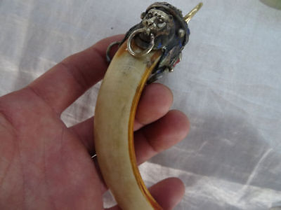 Wild Lion package Wild Boars Tooth Hog talismanic Pendant To ward off bad luck 4