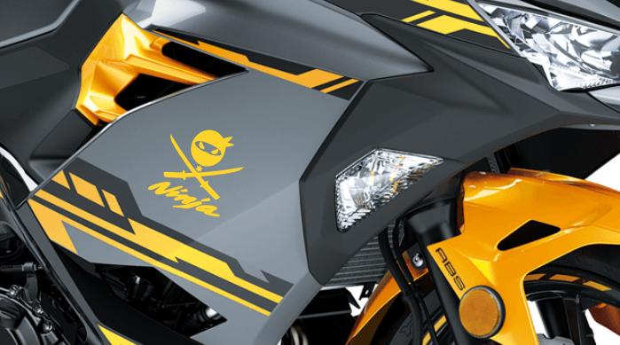 Helmet decals motorcycle stickers removable 2X pcs NINJA