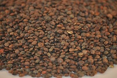 French Lentils - Du Puy (SHIPPING DISCOUNT) 5
