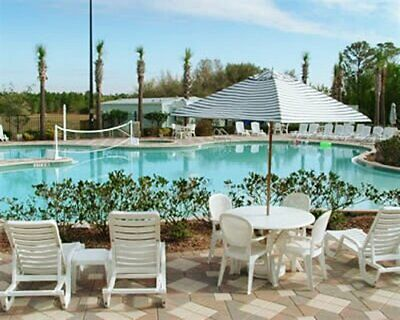 19,800 Festiva Points at Festiva Orlando Resort- Free Closing! 6