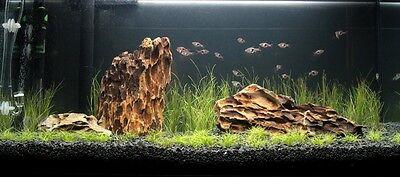 NATURAL BLACK AQUARIUM SUBSTRATE(SAND - GRAVEL 2-5mm) IDEAL FOR PLANTS 12