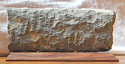 Greco-Kushan 3rd Century Frieze ——> EXQUISITE DETAIL & CRAFTSPERSONSHIP!! 2