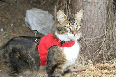 Mynwood Cat Walking Jacket Harness Vest Holster 3