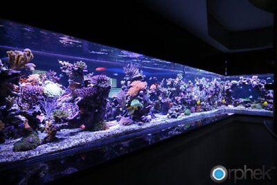 Pompa Aria Per Acquario Dolce Marino Ossigenatore Areatore Bolle Bollicine Acqua