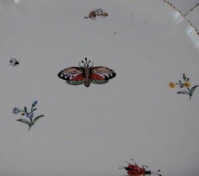 ANTIQUE 18THC NYMPHENBURG Porcelain Floral & Bugs Plate Porzellan ...