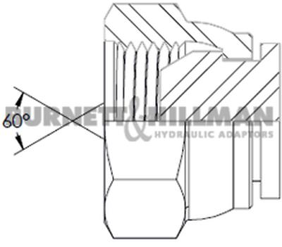 Burnett & Hillman BSP Swivel Blanking Cap Hydraulic Fitting