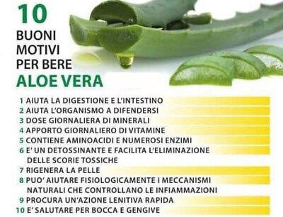 Aloe Vera Succo Puro Zuccari 3 Confezioni da 1000ml Linea Aloevera2 + OMAGGIO 4