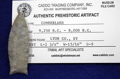 "RARE! ""Cumberland Point"" Authentic Prehistoric Arrowhead 4"