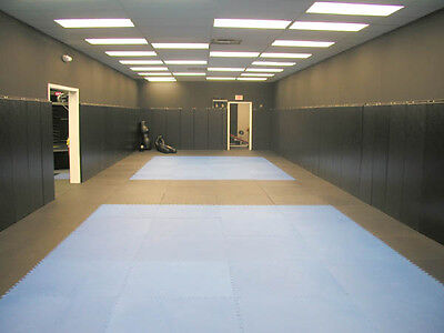 100 FT MMA Martial Arts Mats BJJ Karate muy thai jiu jitsu interlocking  foam mat