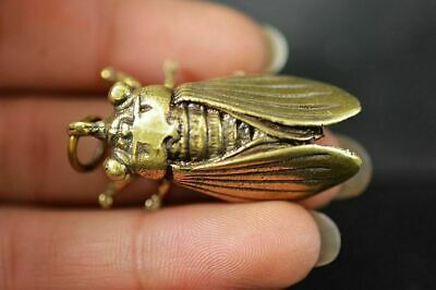 Collection Chinese Brass Copper *Cicada* Lucky Pendant  h494 5