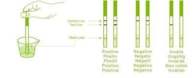 Fertility Saliva Test Mini-Microscope 10 Ovulation Tests 10 Pregnancy Strips 12