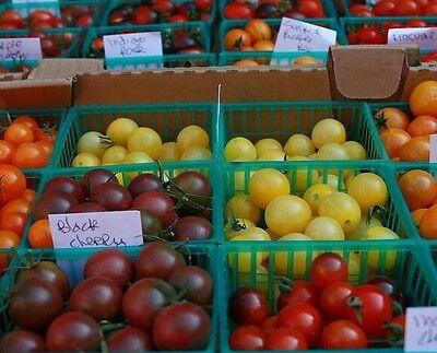 ☺100 graines de tomates cerises (5 variétés  mélangées ) 4