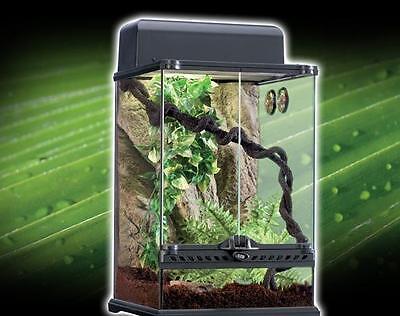 Small Exo Terra PT2602 Rainforest Habitat Kit