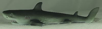 Small Floating Shark for Small Garden Pond or Aquarium,a Useful Present or Gift 2