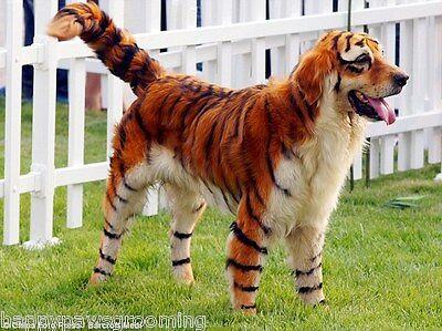 TOP PERFORMANCE PET DOG CAT GROOMING HAIR DYE COLORING GEL ...