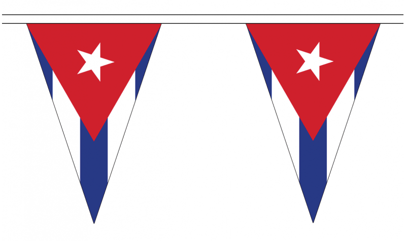 Devon 20M Triangle Flag Bunting Large 54 Flags Triangular