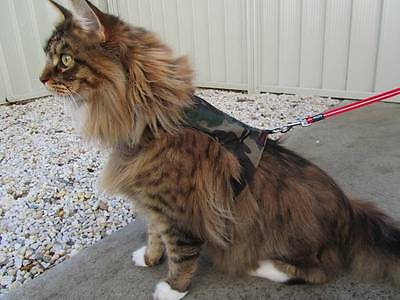 Mynwood Cat Walking Jacket Harness Vest Holster 4