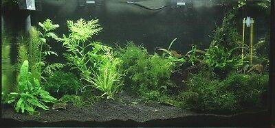 10 KG NATURAL BLACK AQUARIUM SUBSTRATE  ( SAND 1 - 1,6 mm ) IDEAL FOR PLANTS 2