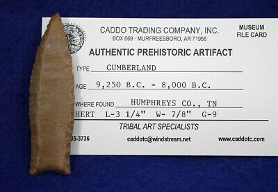 "RARE! ""Cumberland Point"" Authentic Prehistoric Arrowhead 4"