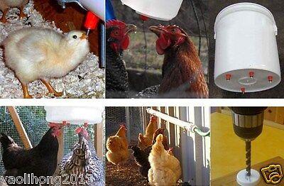 10pcs Water Nipple Drinker Poultry Chicken Duck Screw In 360 Angle Heavy Duty