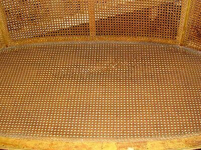 19th Century French Louis XVI Cane Caned Settee Sofa Canapé 4