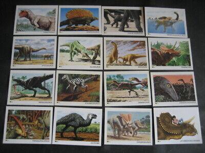 77 Dinotarjetas. Dinosaurios, Fosiles, Paleontologia 5