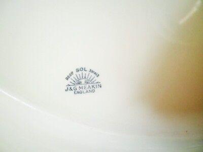 Vintage Platter Green Floral Edge Jg Meakin 40.5Cm Meat Turkey Platter Xmas 5