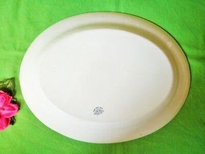 Vintage Platter Green Floral Edge Jg Meakin 40.5Cm Meat Turkey Platter Xmas 4