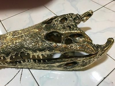 50cm Crocodile skull solid brass large heavy decoration hand made large amazingB 8