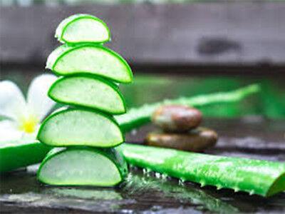 ZUCCARI Aloevera2 Succo puro Aloe Vera 1 Litro Doppia Concentrazione + OMAGGIO