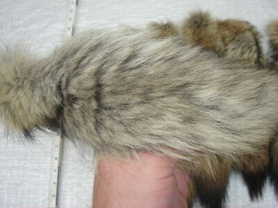 #1 Quality XXL Tanned Western Coyote Tails//Fur//Crafts//Real Fur Tail//Harley parts