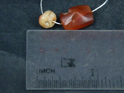 Ancient Carnelian 2 Beads Roman 200 BC    #B1137 3