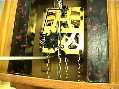 Clock Repair DVD Video - Replace Cuckoo Clock Regula Movement Yourself 5