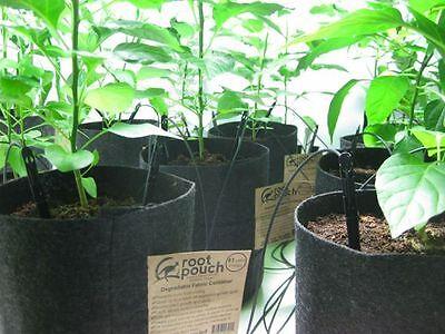 poignées 10 Root Pouch marron 56L Géotextile Smart grow Pot déco container