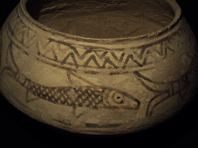 Ancient Huge Size Teracotta Painted Pot with Fishes Indus Valley 2500 BC  #SG617 2