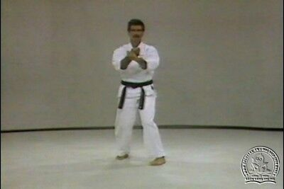 Image result for Rod Mindlin - Okinawan Uechi Ryu Karate Series""