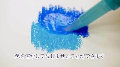 Pentel Vistage 12 24 color Aquash Water Brush set adult watercolor pastels F//S