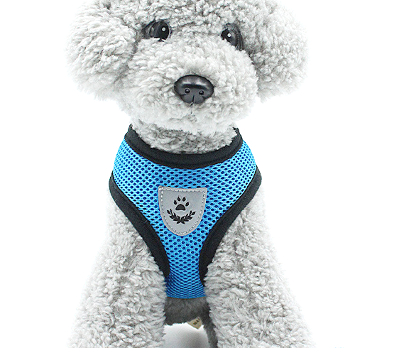 Pet Puppy Harness Breathable Mesh Safety Vest Chest Strap For Small Dogs Puppies 5