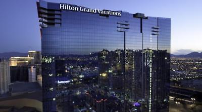 Biennial even Elara  Timeshare Las Vegas Hilton Grand Vacations Club 2